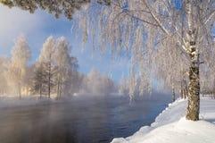 De winterlandschap op de Ural-rivier met mist en bomen in de sneeuw, Rusland, royalty-vrije stock foto