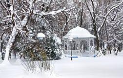 De winterlandschap in oud park in Temerin, Servië royalty-vrije stock afbeelding