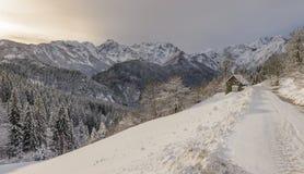 De winterlandschap, Slovenië Stock Afbeelding