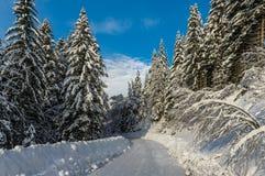 De winterlandschap, Slovenië Royalty-vrije Stock Fotografie