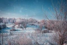 De winterlandschap in sneeuwaard stock afbeelding