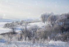 De winterlandschap in sneeuwaard stock foto