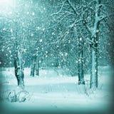 De winterlandschap, sneeuwbos Royalty-vrije Stock Fotografie
