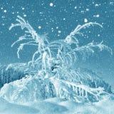 De winterlandschap, sneeuwstorm royalty-vrije stock foto