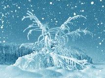 De winterlandschap, sneeuwstorm vector illustratie