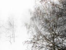 De winterlandschap in sombere sneeuwvaldag De manipulatie van de foto Stock Fotografie