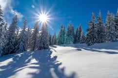 De winterlandschap in Transsylvanië Stock Fotografie