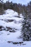 De winterlandschap in Val David stock foto's