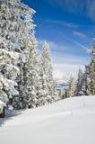 De winterlandschap van alpiene toevlucht royalty-vrije stock foto's
