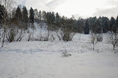 De winterlandschap van Boheems Zwitserland Royalty-vrije Stock Afbeelding