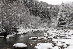 De winterlandschap van de berg Stock Afbeeldingen