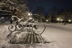 De winterlandschap van de nacht Stock Afbeelding