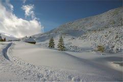 De winterlandschap van de panoramaberg Stock Foto