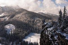 De winterlandschap van de panoramaberg Stock Foto's