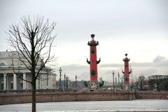 De winterlandschap van heilige Petetsburg met de ijzige rivier, de kolommen en de bomen van Neva royalty-vrije stock afbeeldingen