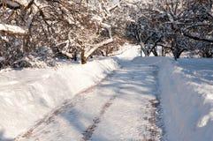 De winterlandschap van het stadspark na een zware sneeuwval in de winter Stock Afbeelding