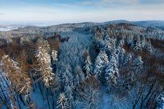 De winterlandschap van hierboven Stock Afbeeldingen
