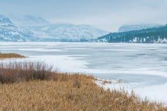 De winterlandschap van moeras en bevroren meer met bergen in afstand stock afbeelding