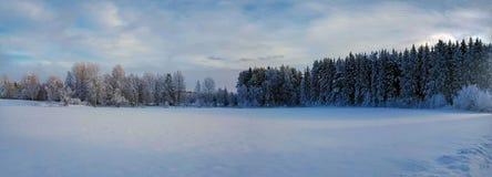 De winterlandschap van de panoramafoto og in Hedmark-provincie Noorwegen royalty-vrije stock foto's