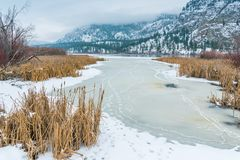 De winterlandschap van de sneeuw behandelde habitat, het meer, en de bergen van het moerasland stock fotografie