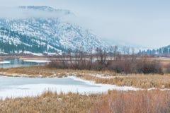 De winterlandschap van de sneeuw behandelde habitat van het moerasland met bergen en mist royalty-vrije stock foto