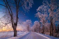 De winterlandschappen, weg, snow-covered bomen Zeer mooie tijd nn stock fotografie