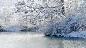 De wintermeer stock footage