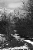 De wintermeer stock foto's