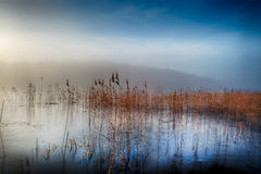 De wintermeer in mist Stock Afbeelding