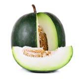 De wintermeloen op witte achtergrond wordt geïsoleerd die Stock Foto