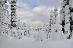 De wintermening in Bergen Stock Afbeelding