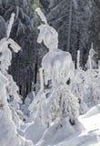 De wintermening in de boskerstbomen in de sneeuw Stock Fotografie