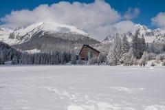 De wintermening van bevroren sneeuw behandelde oppervlakte van Strbske Pleso Stock Foto