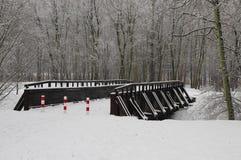 De wintermening van brug stock afbeelding