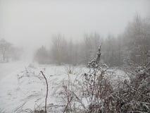 De wintermist 2 Stock Fotografie
