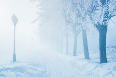 De wintermist van de spookstad op dijkstraat Stock Foto