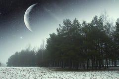 De winternacht in het park royalty-vrije stock afbeelding