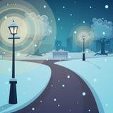 De winternacht in het park Royalty-vrije Stock Afbeeldingen