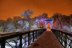 De winternacht in het park Stock Foto's