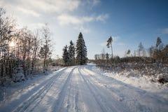 De winterochtend, bevriezende koude Stock Fotografie