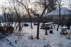 De winterochtend in de tuin Stock Afbeelding