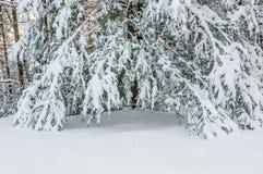 De winteronweer in appalachia royalty-vrije stock afbeelding