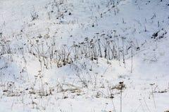 De winteropen plek met sneeuw stock afbeeldingen