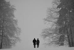 De winterpaar die tussen grote bomen lopen royalty-vrije stock fotografie