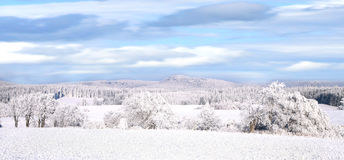 De winterpanorama Royalty-vrije Stock Afbeeldingen