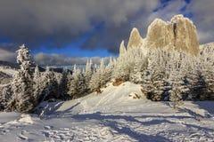 De winterpanorama, Eenzame Rots, de Karpaten, Roemenië Royalty-vrije Stock Foto's
