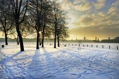 De winterpanorama van St. Petersburg Royalty-vrije Stock Fotografie