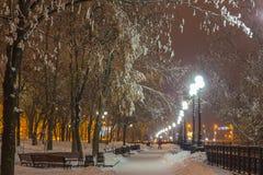 De winterpark in de avond met sneeuw wordt behandeld die royalty-vrije stock foto