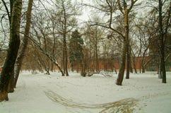 De winterpark, over een klooster Royalty-vrije Stock Foto