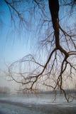 De winterpark Peking Stock Afbeelding